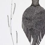 1x2-oiseau-noir