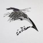 2x2-tete-d-oiseau