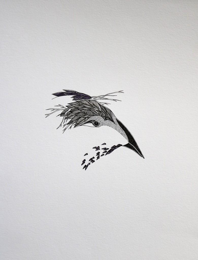 Tête d'oiseau