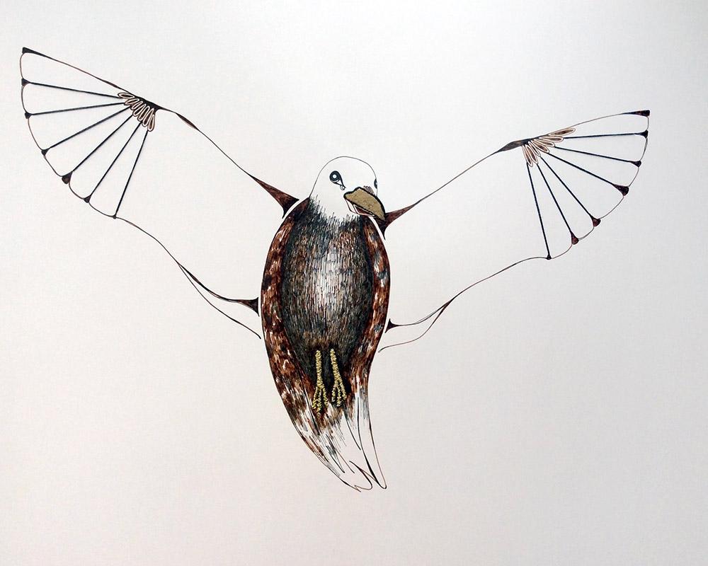 Une histoire de l'orée - L'oiseau