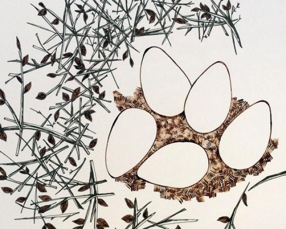 Une histoire de l'orée – Le nid